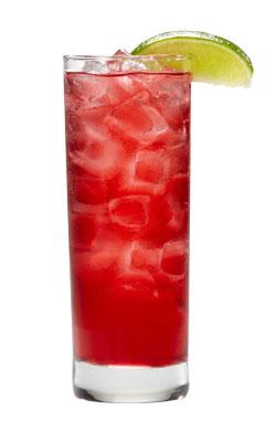 240x390-pom-berry
