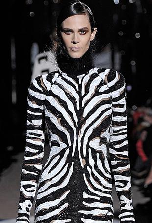 zebra-print-p