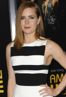 Amy Adams Stands Out at a Screening in David Koma's Striped Semi-Sheer Dress