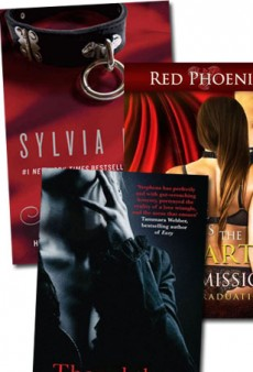 Steamy Reads for Your Holiday Break
