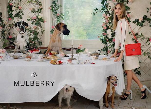 mulberry cara delevingne 620