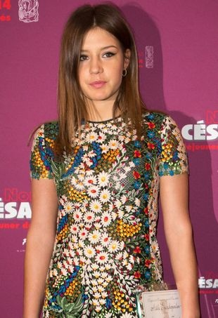 Adele-Exarchopoulos-Cesars-2014-Nominee-Luncheon-Paris-portrait-cropped