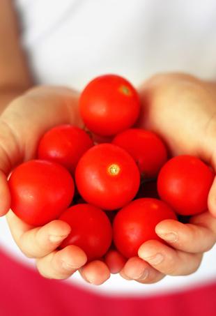 tomatoes-p
