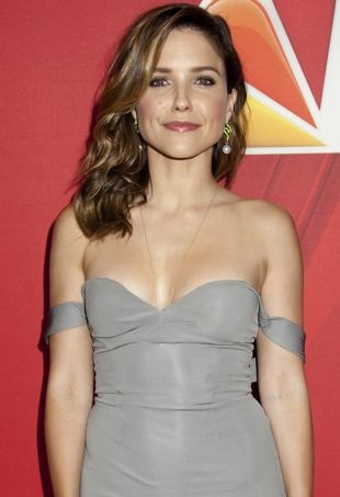 Sophia-Bush-2014-NBC-Upfront-Presentation-New-York-City-portrait-cropped