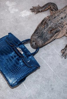Watch: Photographer Tyler Shields Feeds a $100,000 Birkin to a Crocodile
