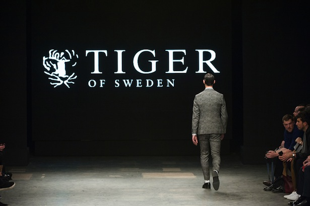 Tiger-of-Sweden-fall2015-landscape