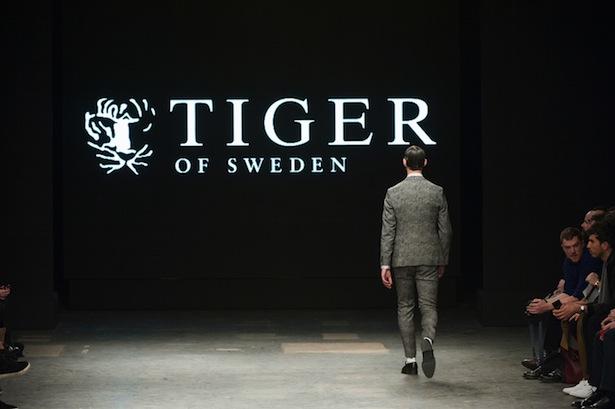 Tiger-of-Sweden-fall2015-landscape