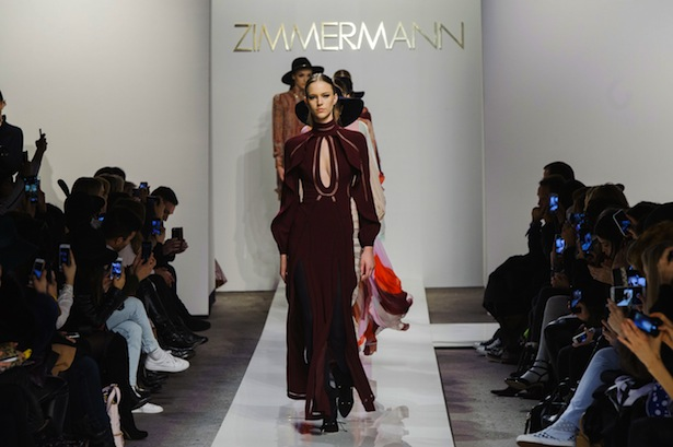 Zimmermann-fall2015-landscape