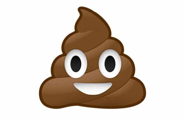 an image of the smiling poo emoji