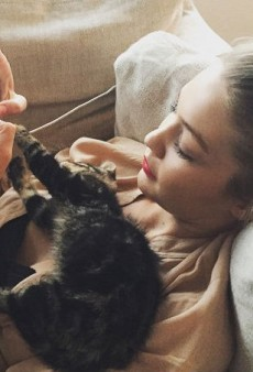 10 Celebrity 'Babies' (Human and Animal) That Have More Instagram Followers than You