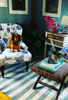 Christian Siriano: How to Keep a Stylish Home on a Budget