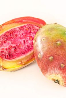 Prickly Pear Is Fall's Breakout Beauty Ingredient