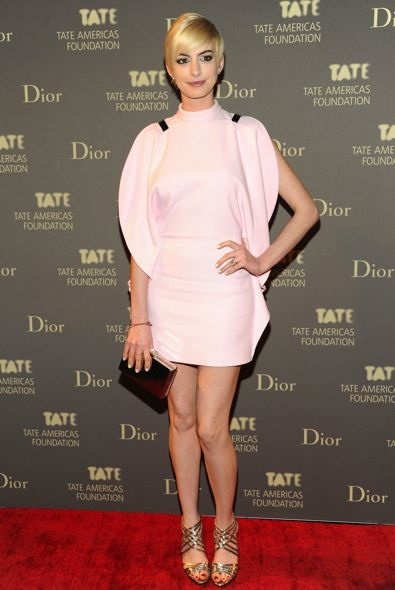Anne Hathaway at the 2013 Tate Americas Foundation Artists Dinner