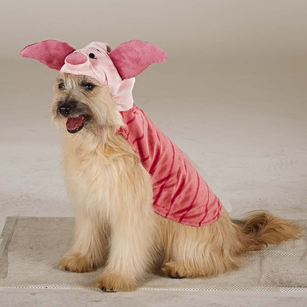 Piglet Pooch & 47 Halloween Costumes for Your Dog - theFashionSpot