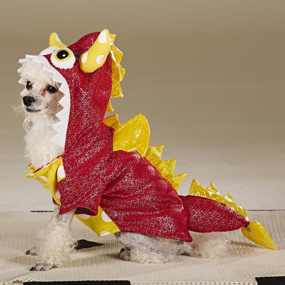 Dragon Dog