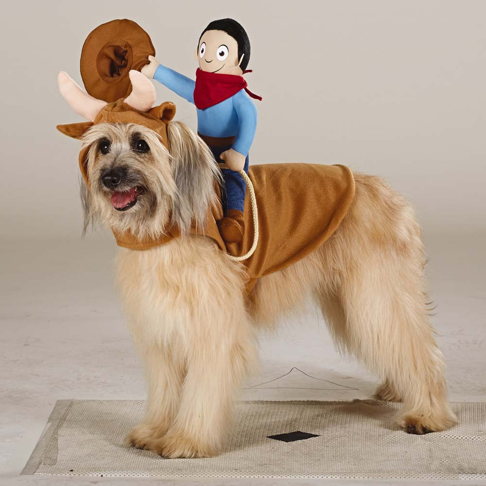 Top Paw Dog Apparel Cowboy Rider & 47 Halloween Costumes for Your Dog - theFashionSpot