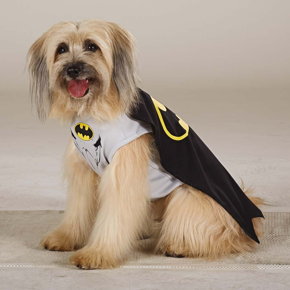 Batman & 47 Halloween Costumes for Your Dog - theFashionSpot