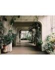 Hall of Amazing Plants