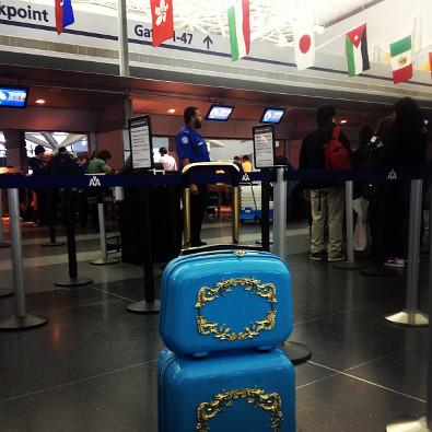 Giovanna Battaglia's Luggage