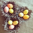 Lauren Conrad Gets Crafty for Easter