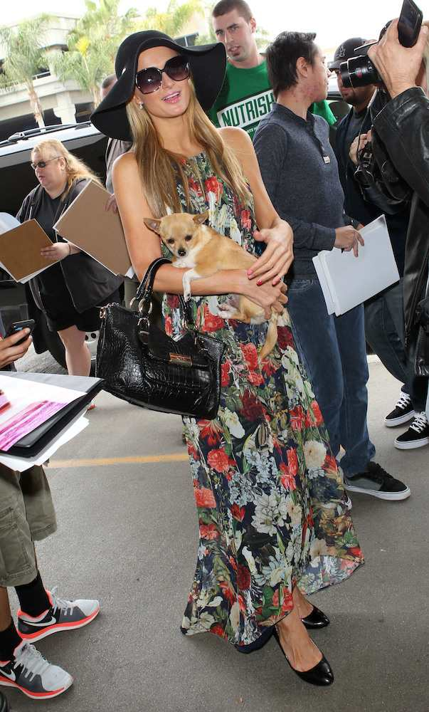 Paris Hilton at LAX
