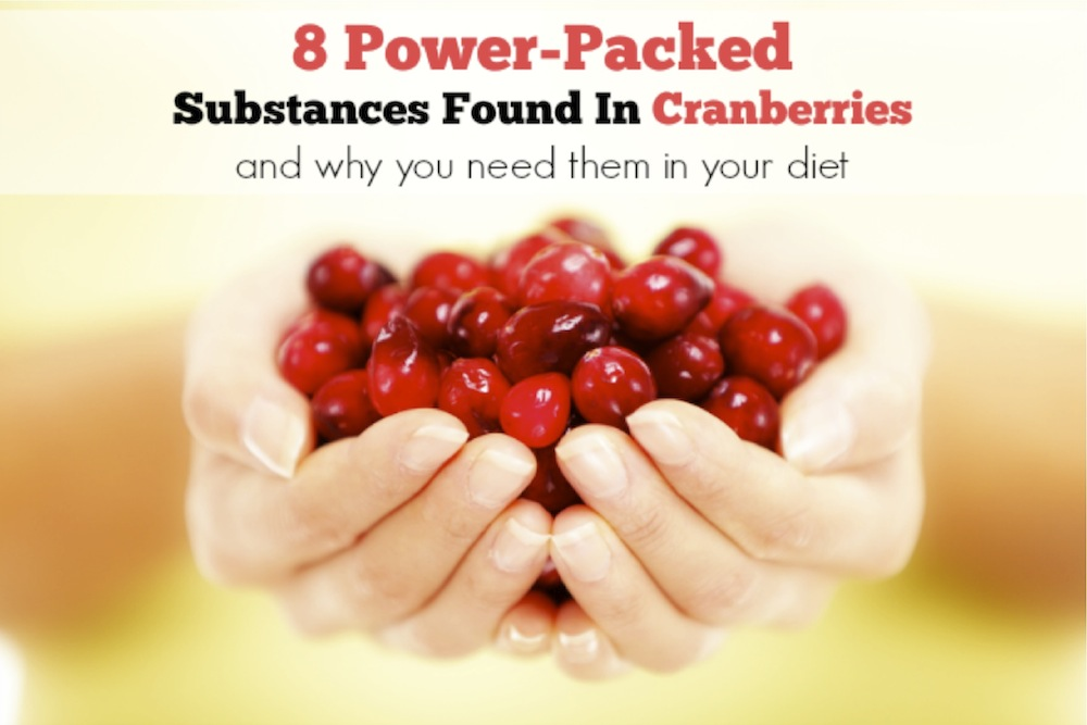 8 Power-Packed Substances Found In Cranberries and why you need them in your diet